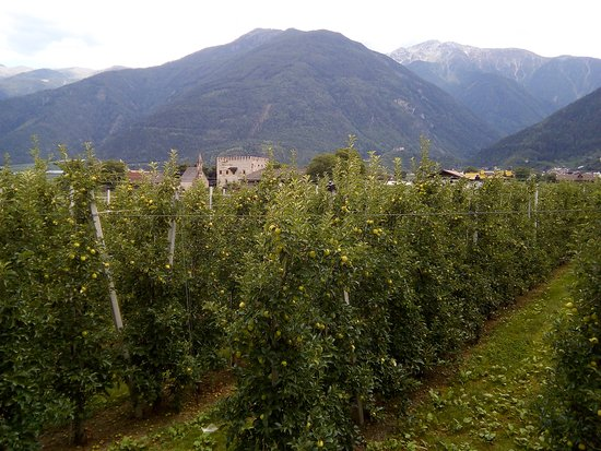 Coldrano, Itália: Blick vom Balkon