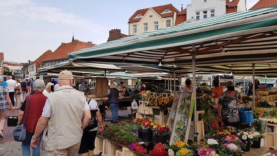 Lingener Wochenmarkt