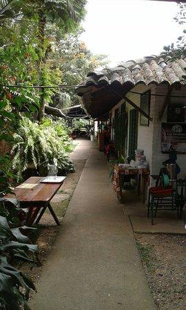 Jamundi, Colombia: Aleja