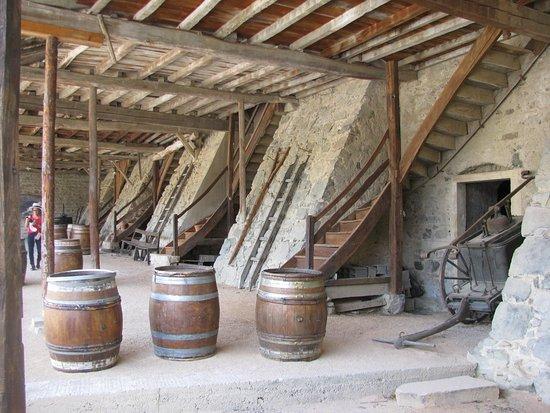 Quincie-en-Beaujolais照片
