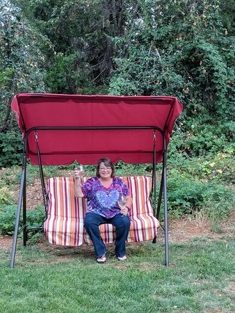 Grass Valley, CA: Swing on the property was a nice spot to enjoy a glass of wine or two!