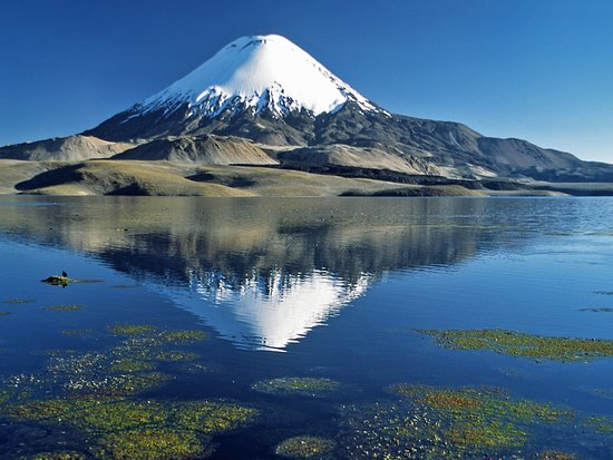 Lauca National Park, Chile: Dit is de in het Laguna Chungará weerspiegelde vulkaan Parinacota, gelegen Noord-Chili.
