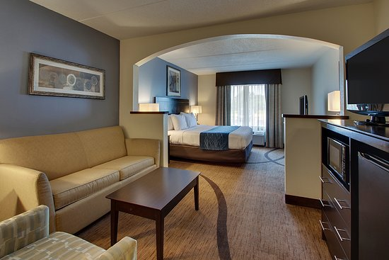 Wingfield Inn & Suites: Non-Smoking Studio Suite