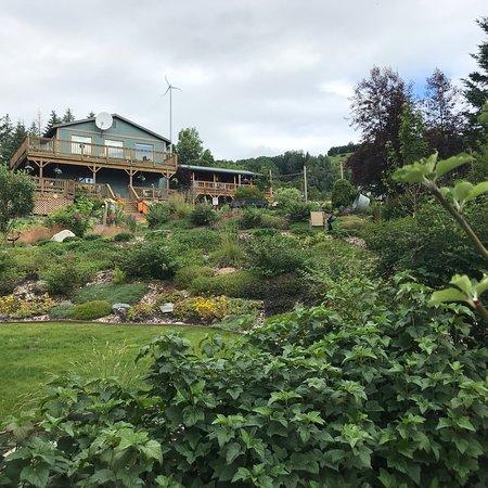 Bear Creek Winery and Lodging: photo5.jpg