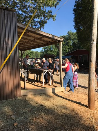 Collinsville Trade Day - 2019 All You Need to Know BEFORE
