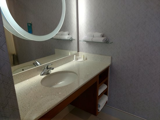 SpringHill Suites Miami Downtown/Medical Center : bathroom one