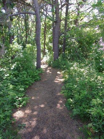 Biddeford Pool, Мэн: Sanctuary Path