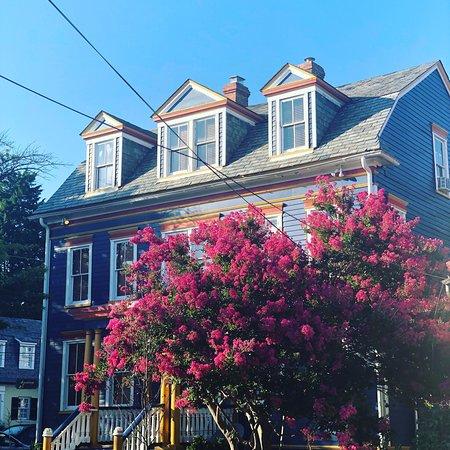 Annapolis Historic District: photo5.jpg