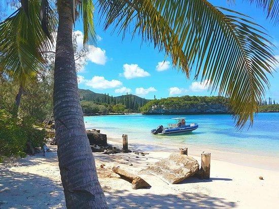 Νησί των Πεύκων, Νέα Καληδονία: belle plage de l'ile des pins