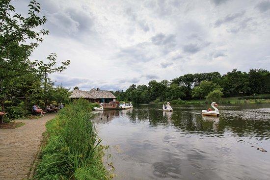 Verona, Нью-Джерси: Swan Boats