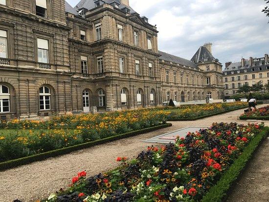 Luxembourg garden foto di giardini del lussemburgo parigi