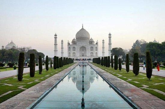 Tour privado de Taj Mahal Agra en el...