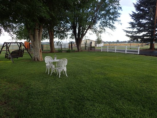 Alturas, CA: Nice grass area to relax across from rooms.