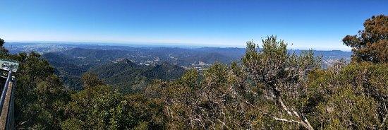 Mount Warning ภาพถ่าย