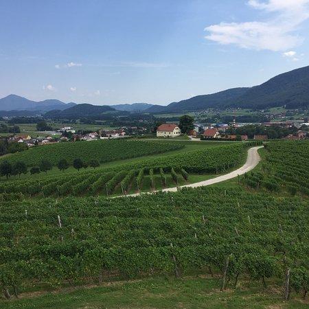 Slovenske Konjice, Slovenia: photo6.jpg