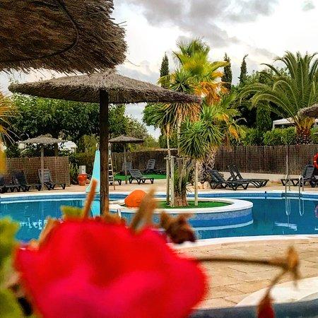 Càlig, España: Camping L'Orangeraie