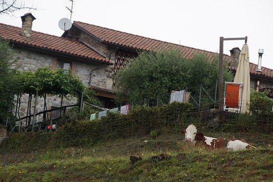 Orturano di Bagnone Photo