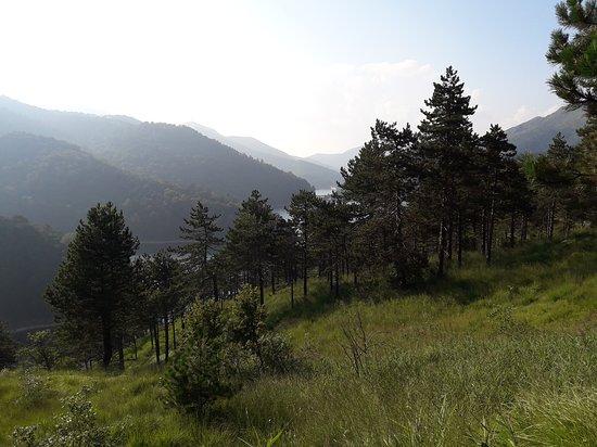 Ceranesi, Italia: i boschi sopra i laghi del gorzente