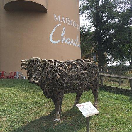 Maison du Charolais : photo1.jpg