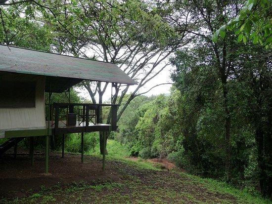 Sekenani Camp: Private tent
