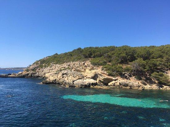 Olive Trail Mallorca