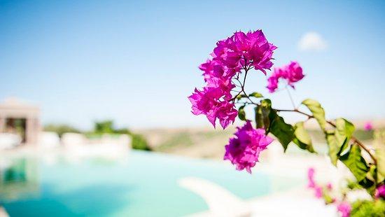 Temara, Marruecos: Outdoor Pool Details