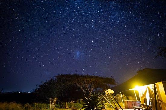 White Elephant Safari Lodge: Glamping in Pongola Game Reserve bush