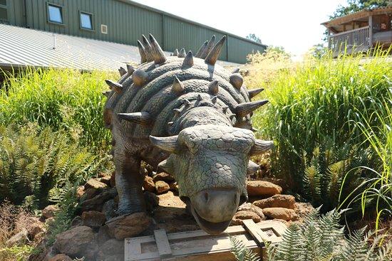 Roarr! Dinosaur Adventure: Roarrsome