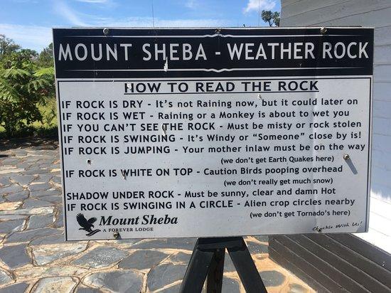 Pure Serenity at Mount Sheba