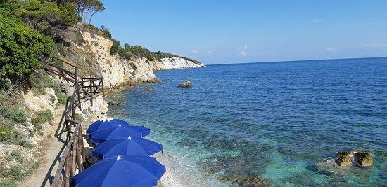 Hotel Villa Ombrosa : spiaggia e mare hotel ombrosa