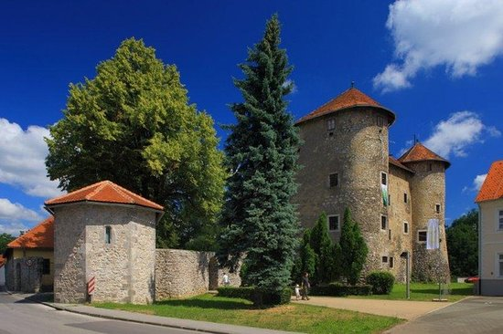 The Frankopan Castle