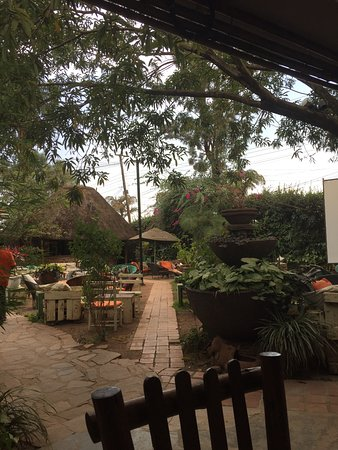 Gattomatto Kampala Restaurant Reviews Photos Phone Number