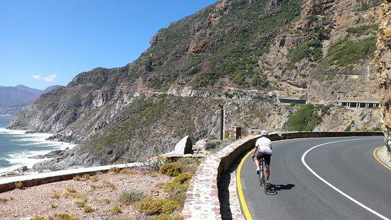 Cycle the Cape - Day Tour