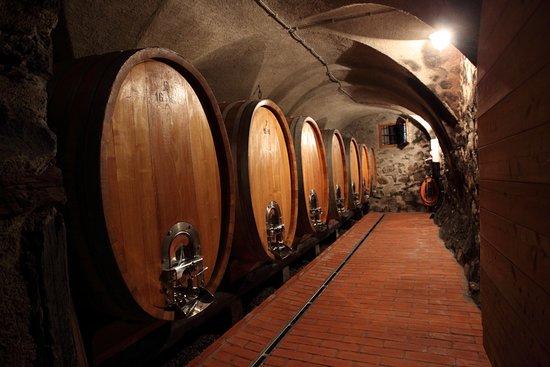 Брессаноне, Италия: Kuenhof Cellar