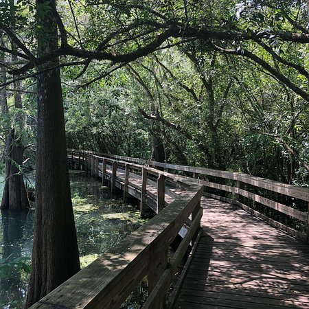 Bell, Флорида: photo2.jpg