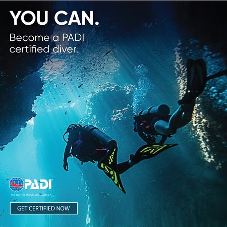 Phoenix Scuba - 2018 All You Need to Know Before You Go (with Photos ...