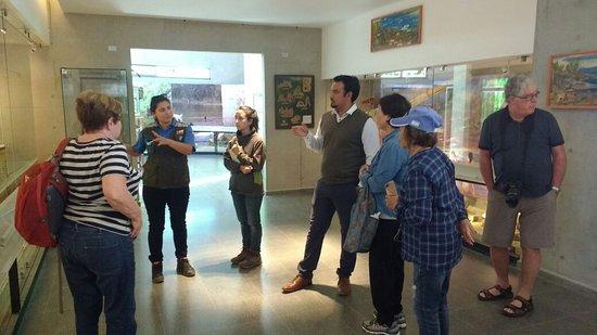 Tour San Antonio museum