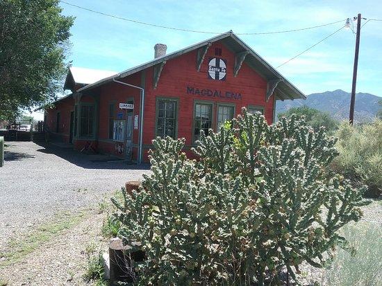 Magdalena, NM: Library