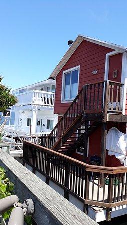 Sausalito Floating Homes Tour (San Francisco) - Book in Destination