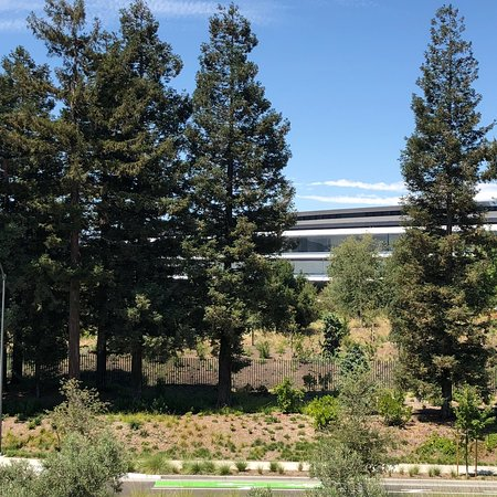 Apple Park Visitor Center: photo9.jpg