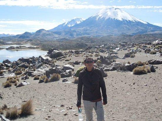Arica and Parinacota Region, Cile: Parqe Nacional Lauca  - Lagunas de Cotacotani