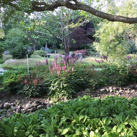Japanese Garden: photo4.jpg