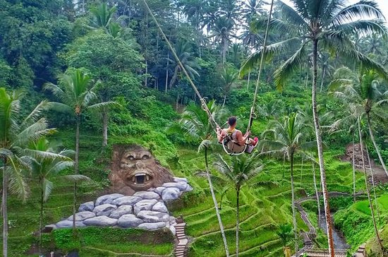 Ubud Sightseeing and Swing