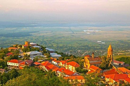 Visite de dégustation de vin à Kakheti
