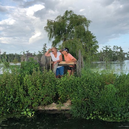Swamp Tours of Acadiana: photo1.jpg