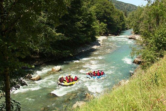 Alpo Vive Rafting