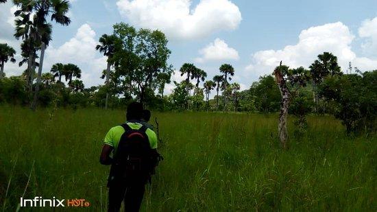 Volta Region, غانا: Kalakpa Nature Reserve
