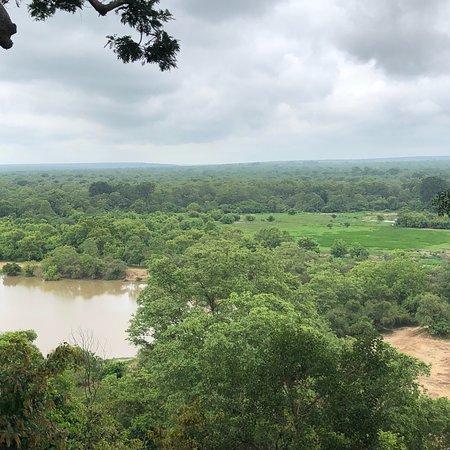 Mole National Park, Ghana: photo3.jpg