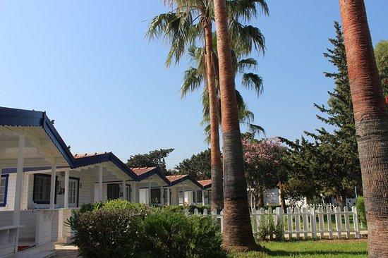 Mavi Beyaz Boutique Hotel & Beach Club: Bungalow Odalarımız