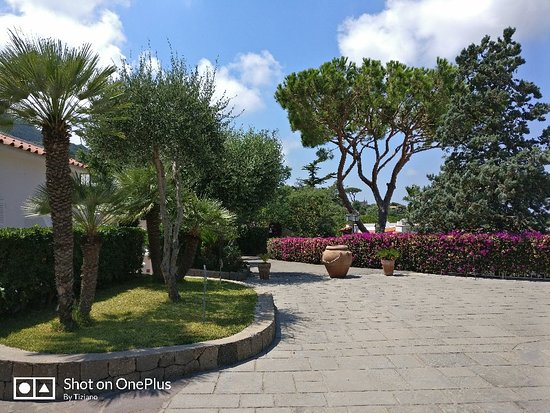 Poggio Aragosta Hotel & Spa: IMG_20180728_132758_large.jpg
